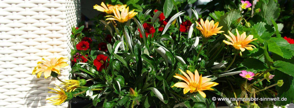 Garten und Balkon - genießen Sie die Vielfalt der Natur im Wechsel der Jahreszeiten