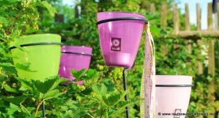 Da staunen die Freundinnen: Gartenlichter in verschiedenen Größen und Farben ...