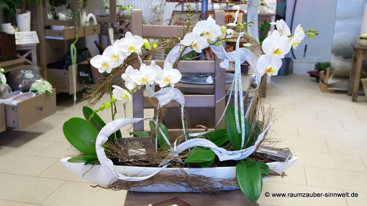 Orchideenschale schokoladig verpackt