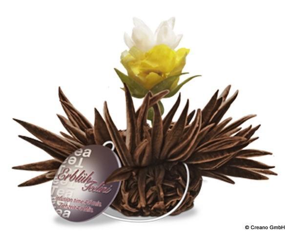 Bergamot Pearl - Schwarzer Tee mit Blüten der Rose (Centifolia), Jasmin und Bergamotte-Aroma