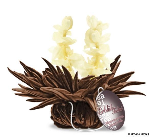 Jasmine Dream - Schwarzer Tee mit Jasminblüten und Jasmin-Aroma
