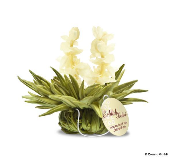 Jasmine Heaven - Weißer Tee mit Jasminblüten und Jasmin-Aroma