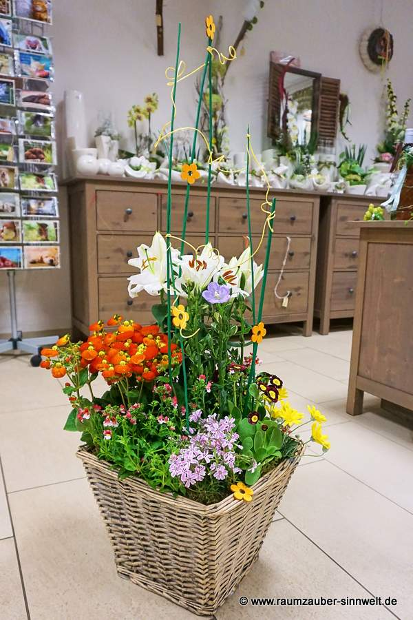 Einpflanzung mit Lilien, Phlox und Pantoffelblümchen