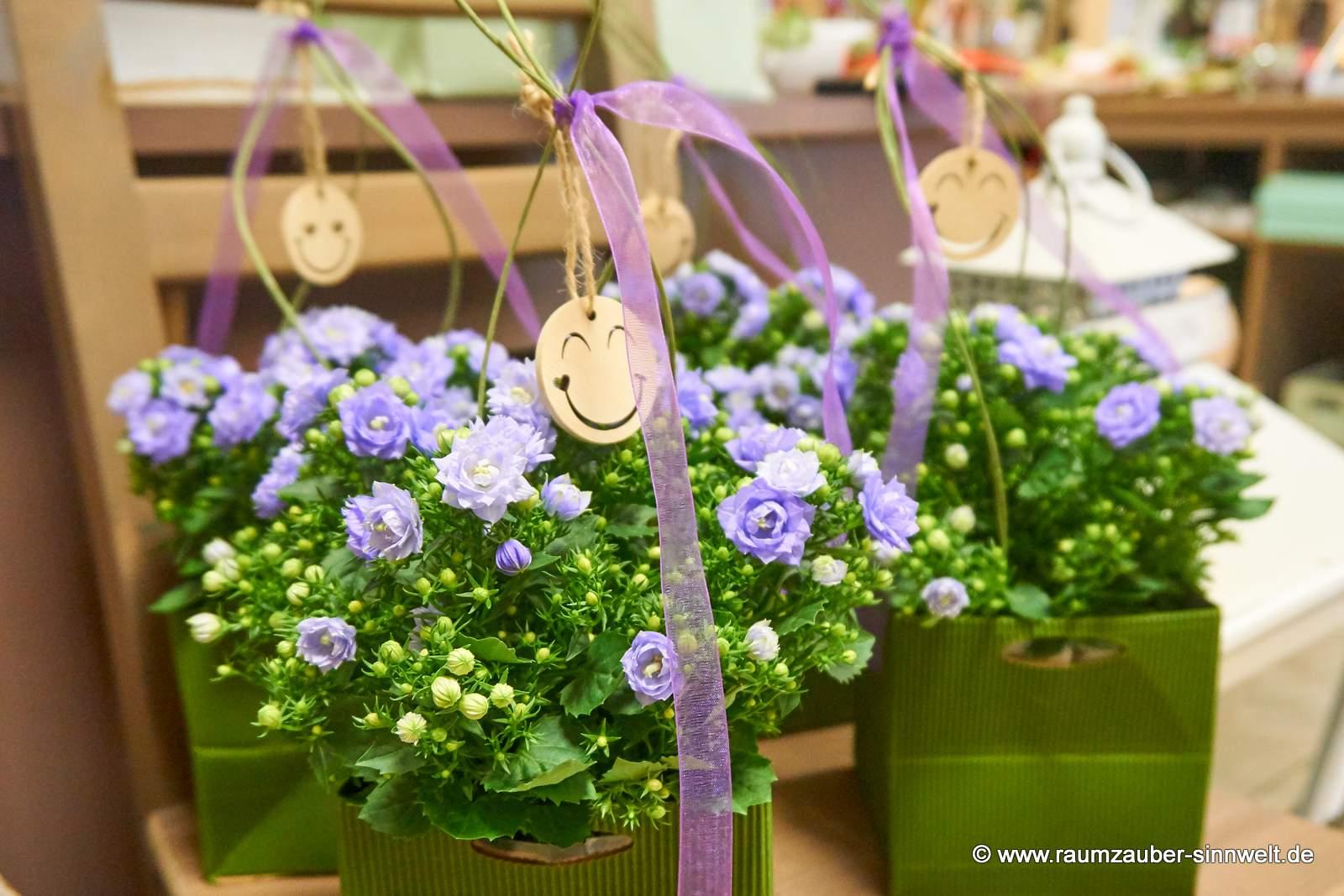 Glockenblumen mit Smily
