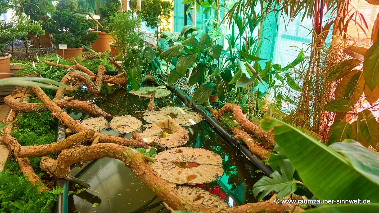 tropisches Biotop