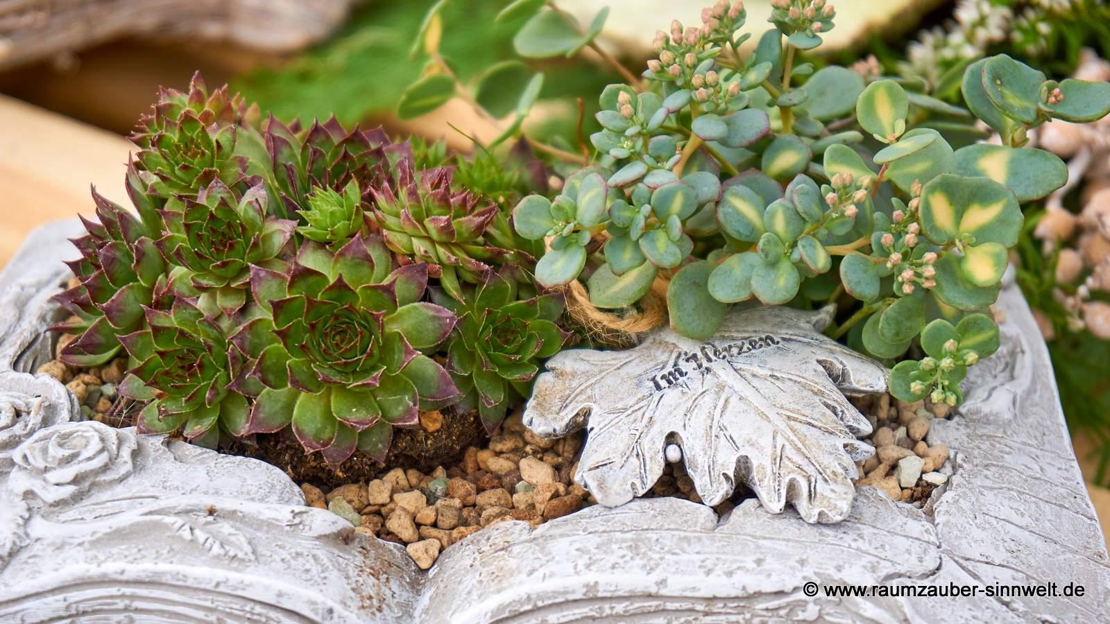 bepflanzte Steinschale mit Gedenkblatt