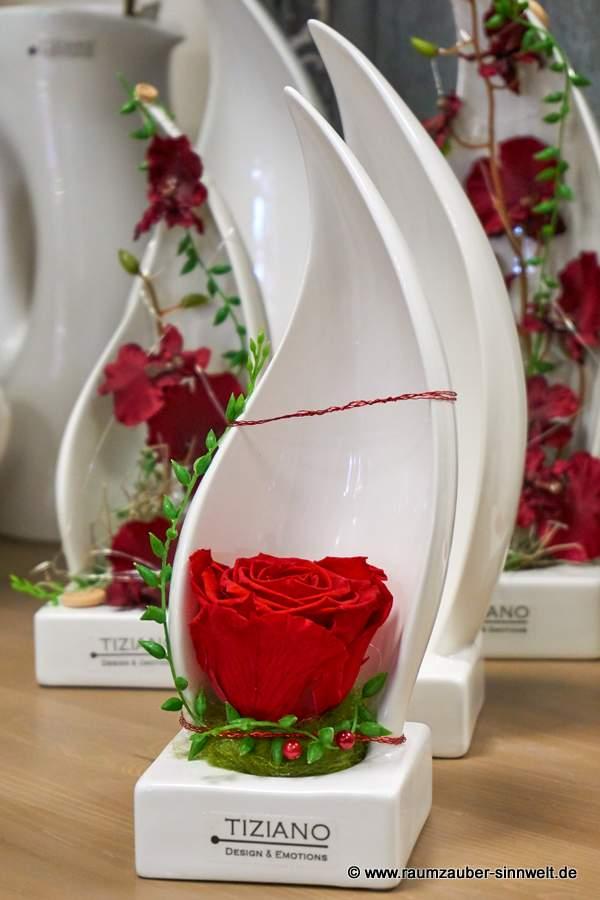 gefriergetrocknete Rose in edler TIZIANO-Keramik Alviso