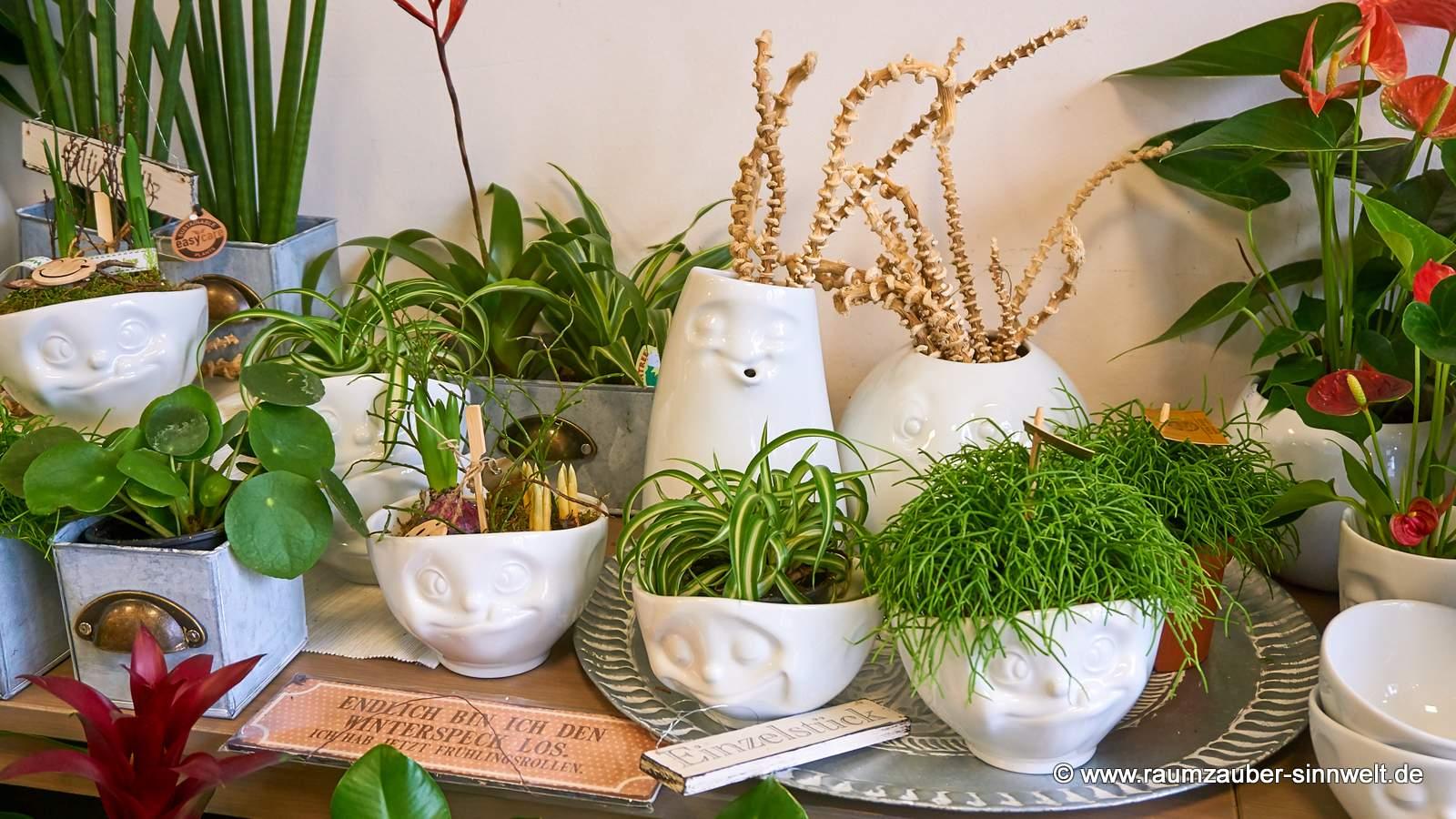 FIFTYEIGHT PRODUCTS Becher verschmitzt und Schale glücklich mit Pflanzen