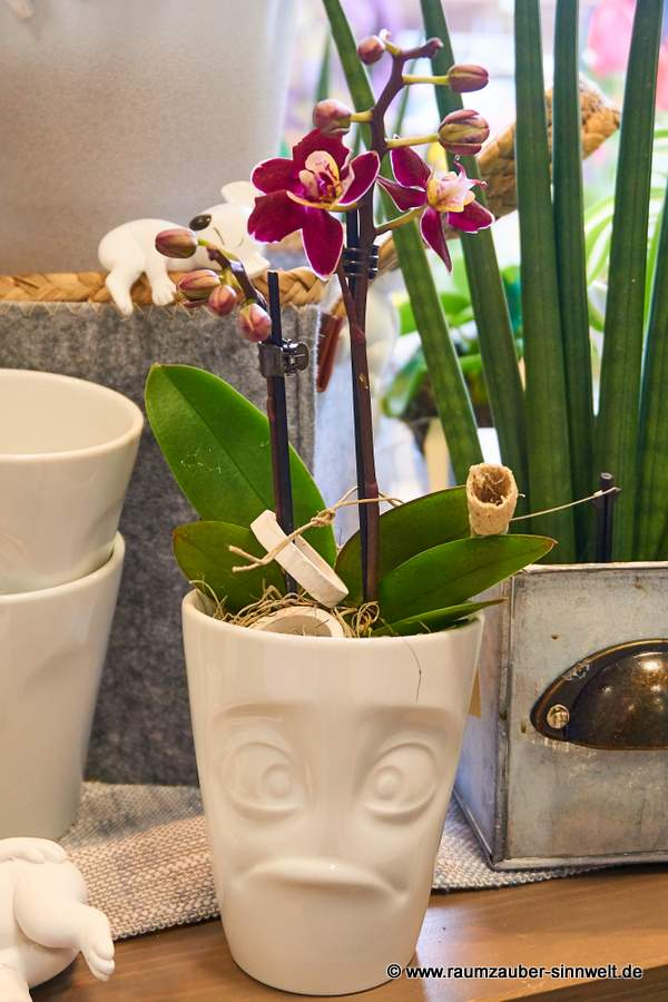 FIFTYEIGHT PRODUCTS Becher schmollend mit Orchidee