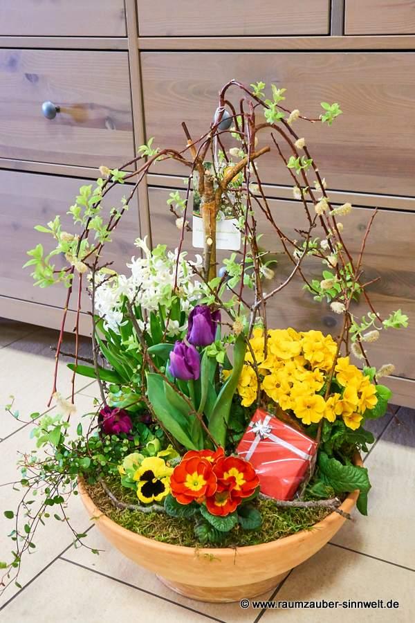 Frühlingseinpflanzung mit Überraschung