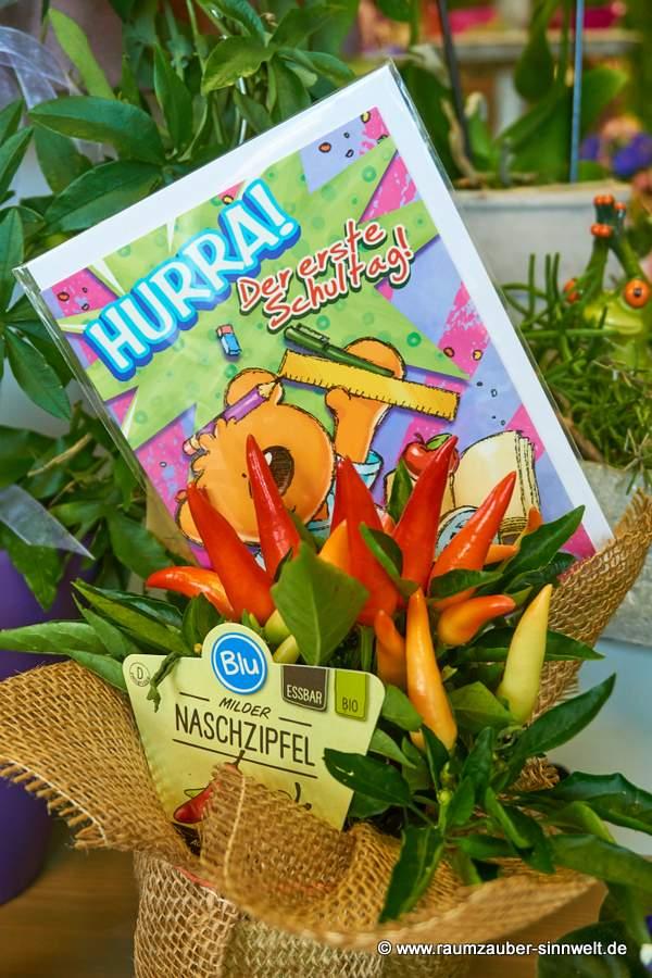Paprika-Naschzipfel mit Einschulungskarte