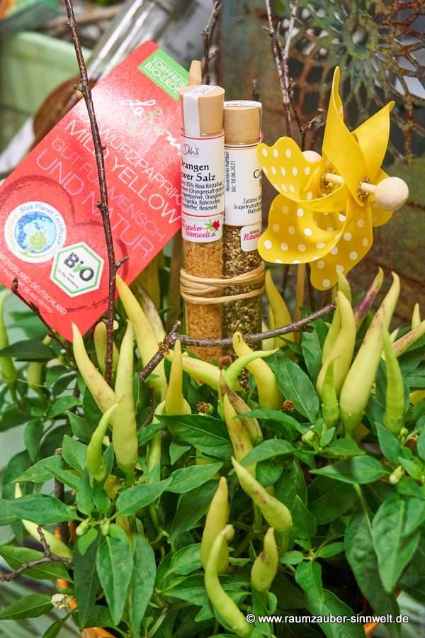 Bio-Paprika-Naschzipfel mit Gewürzröhrchen