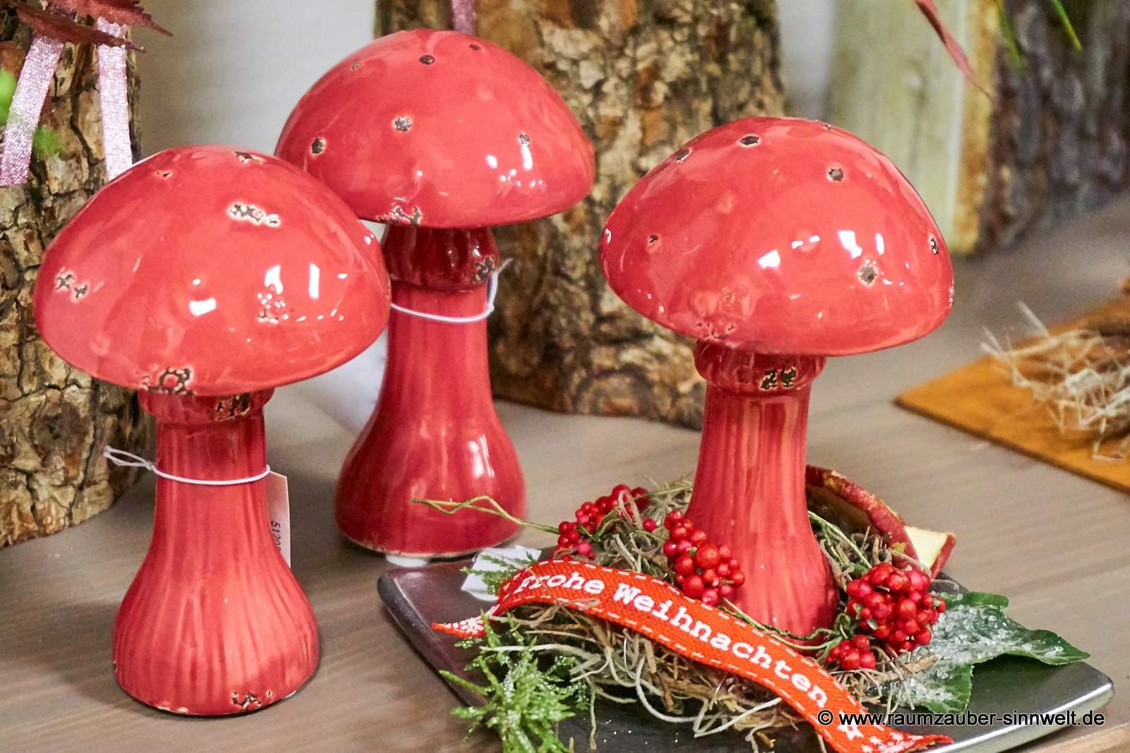 Trockendekoration mit Pilzen von Posiwio