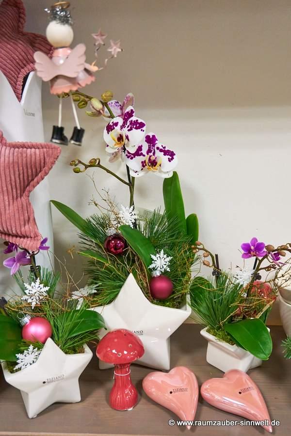 TIZIANO Kübel Casoria mit Orchidee weihnachtlich dekoriert