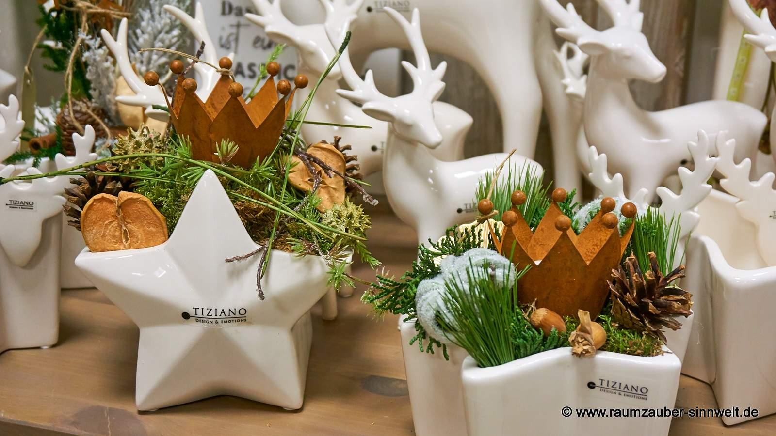 TIZIANO Kübel Casoria und Sternschale Lazio mit Teelicht weihnachtlich dekoriert