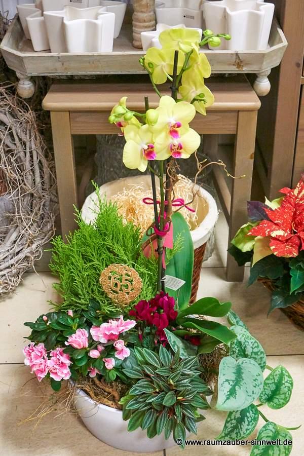Stilvolle Einpflanzung mit Orchidee