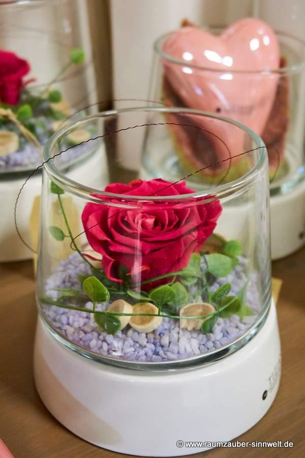 gefriergetrocknete Rosen in TIZIANO - Gefäß