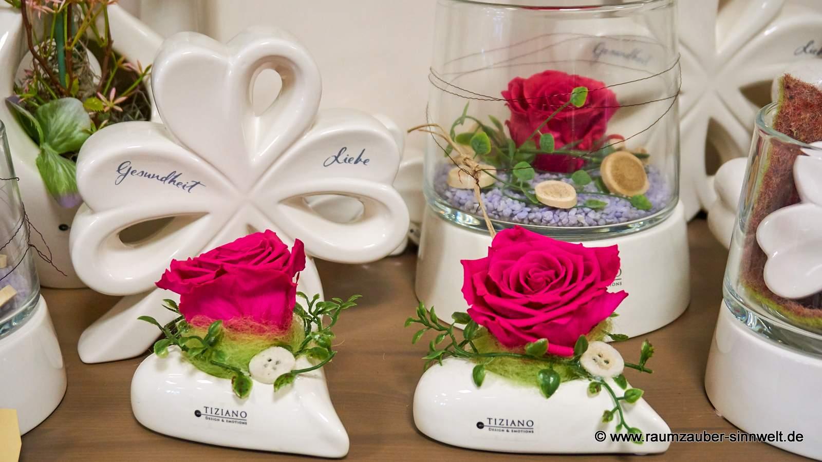 gefriergetrocknete Rosen in TIZIANO - Herz Belvina