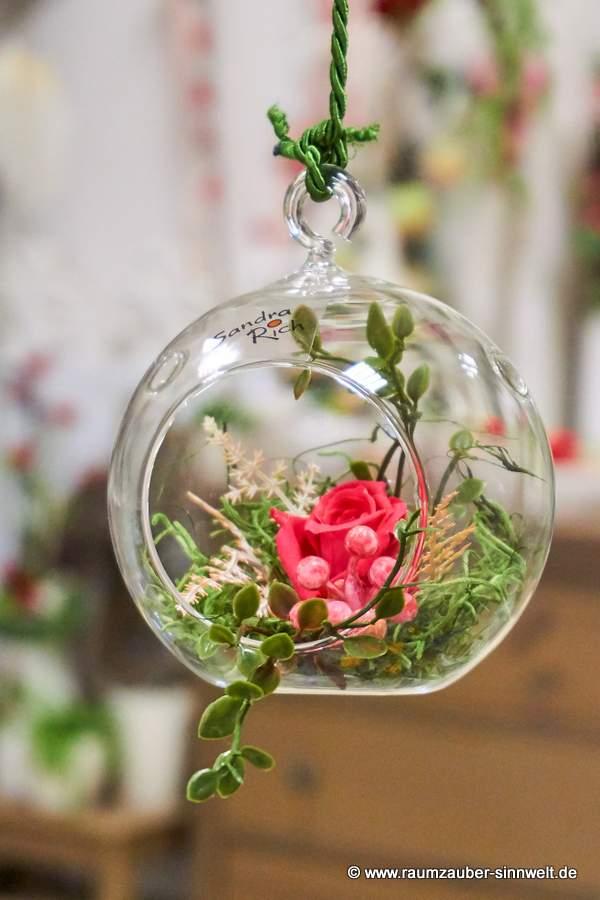 gefriergetrocknete Rosen in Glasgefäß von Sandra Rich